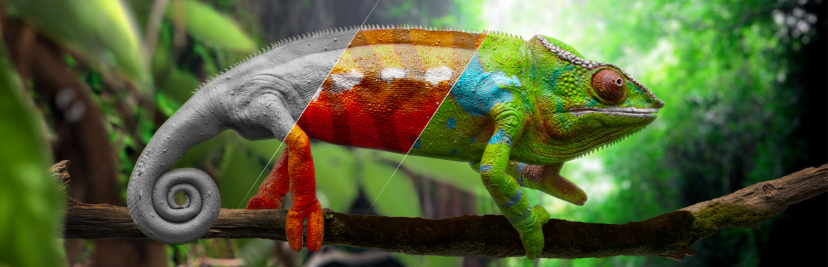 3D chameleon animation and VFX